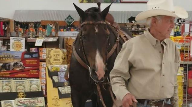 hombre entra con caballo a tienda