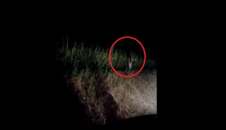 fantasma de un solo pie tailandia