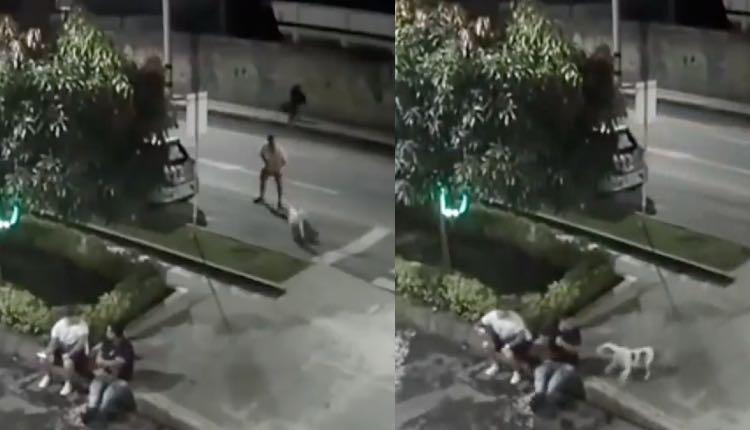 hombre suelta a perro pitbull para atacar a sus vecinos