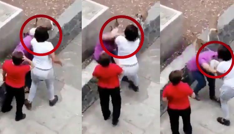 mujer agrede a abuelita en tlatelolco