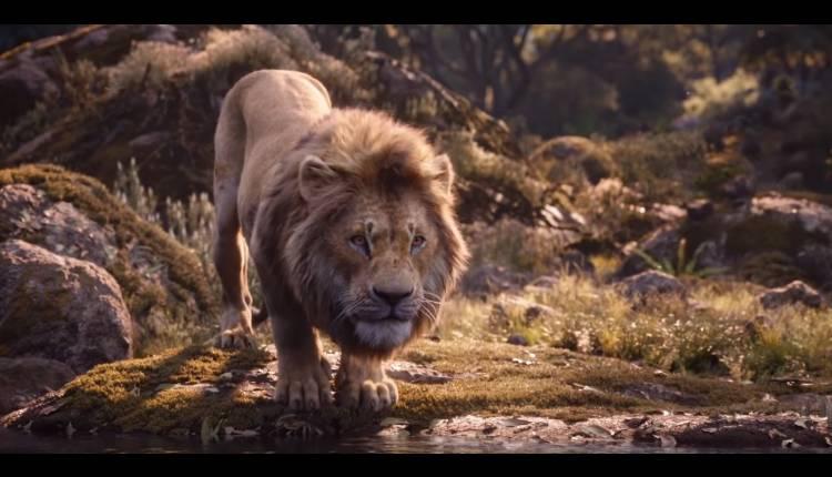 el rey león live action disney