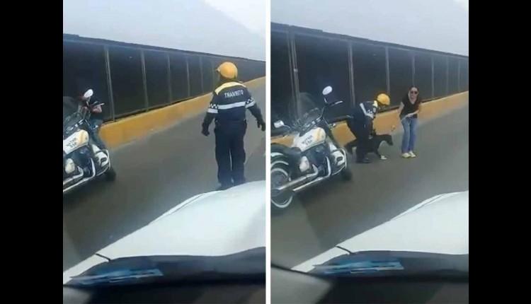 policía salva a perrito en circuito interior