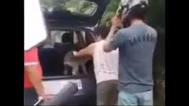 joven enfrenta a familia que abandonó a perrito