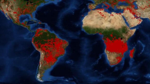 africa incendios