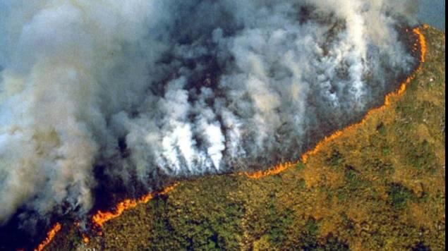 incendio amazonia brasil