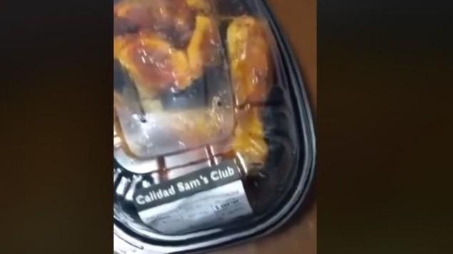 pollo rostizado gusanos