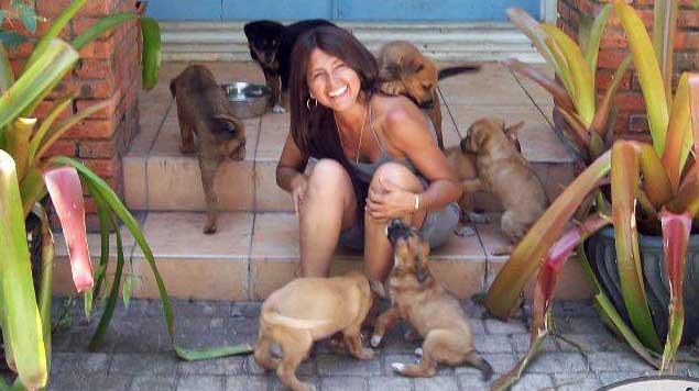 perros rescatados huracan dorian