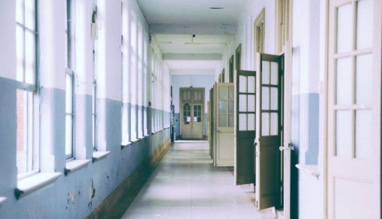 heorina niño escuela, PISA