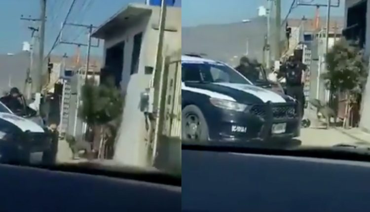 perro policias tijuana