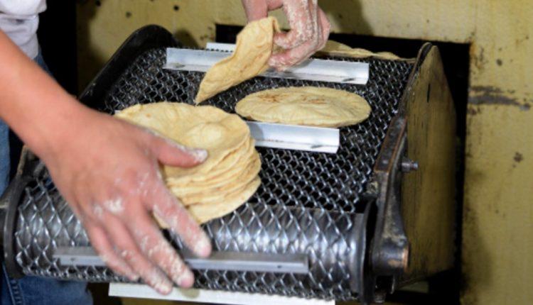 tortillas precio aumento