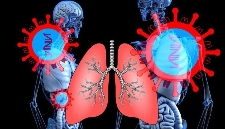 pulmones coronavirus
